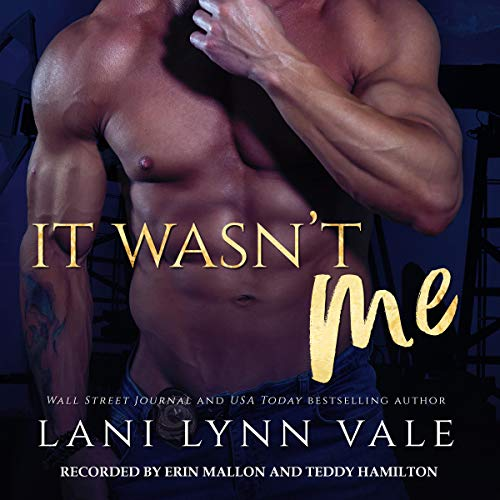 It Wasn't Me Audio Cover